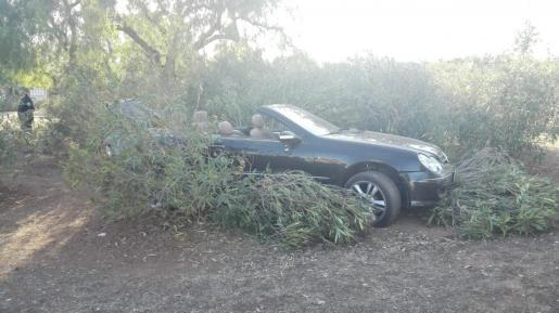 Dos menores, autores de un robo, sufren un accidente de tráfico y huyen al grito de «mi padre me mata»